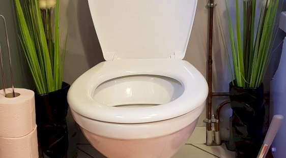 Toilette - Domaine des Rigauds